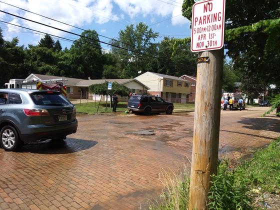Car hits fire hydrant by Turner school field.