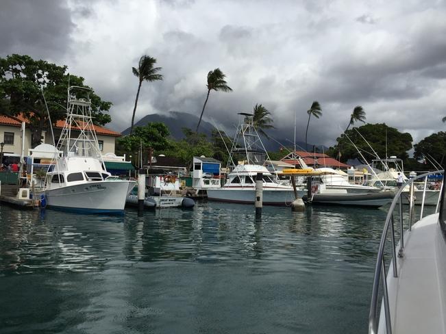 Harbor Hawaii, United States
