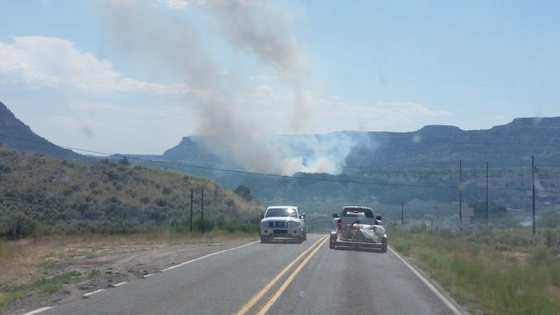 Cottonwood on fire