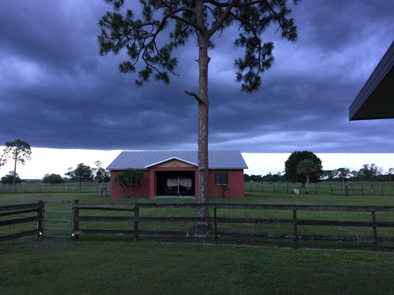 Okeechobee,Fl Weather