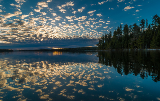 Under a Mackerel Sky