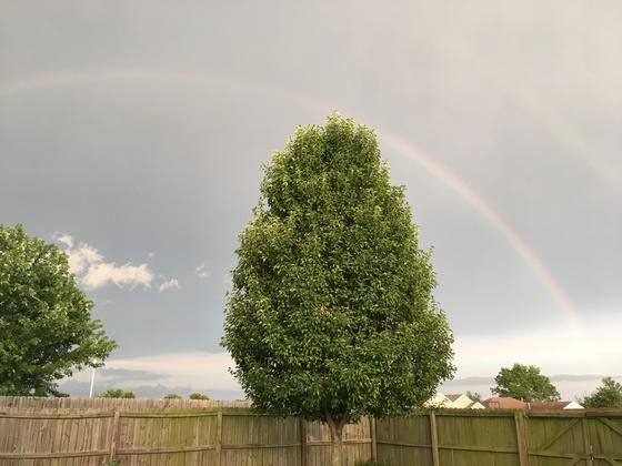 Double rainbow over pea ridge