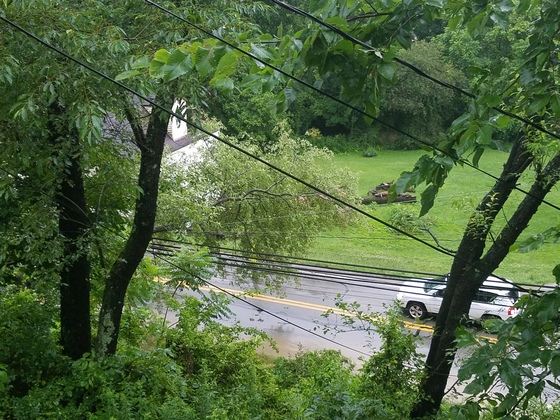 Tree and fallen power lines closes rt 50 in Cecil
