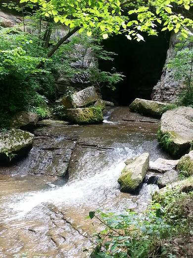 Donaldson Cave