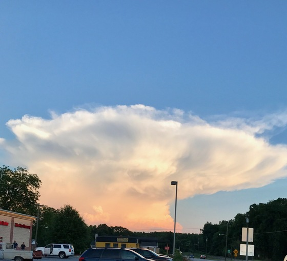 Mushroom Cloud taken by Kay Lollis