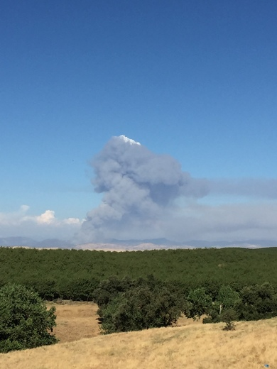 Tuolumne Fire near Lake McClure