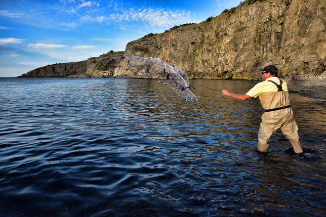 Throwing The Net For Capelin Middle Cove, Logy Bay-Middle Cove-Outer Cove, NL