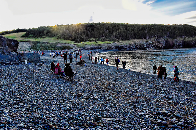 The Gathering Of The Masses Middle Cove Beach