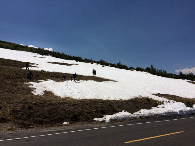 Snow in the Summer in Rocky 1-117 Aspen Dr, Lyons, CO 80540, USA