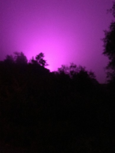 Purple Aptos Sky