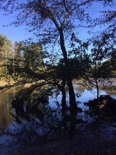 Picture taken at Pocahontas State Park