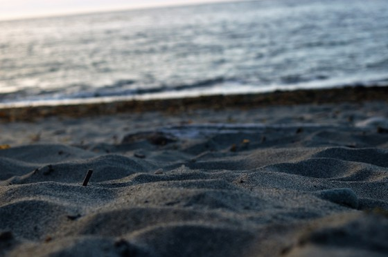 Fort Worden Sand