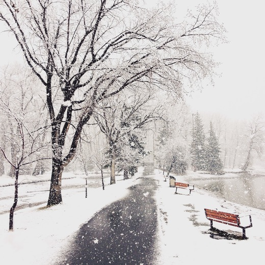 4c. Spring snowstorm in Bowness Park