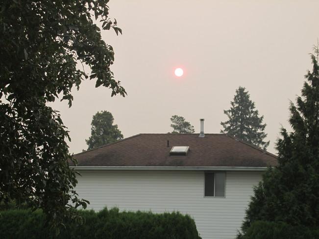 Forest Fire Smoke Watson Rd, Sardis, Chilliwack, BC