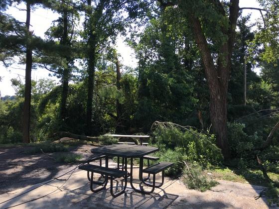 Storm damage Boyce Park