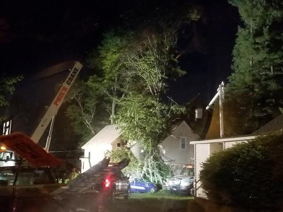 Keene home tree broken