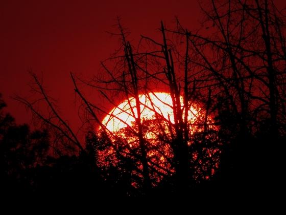 Sunset...last night