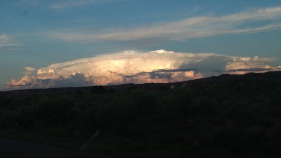 Nature's Mushroom Cloud