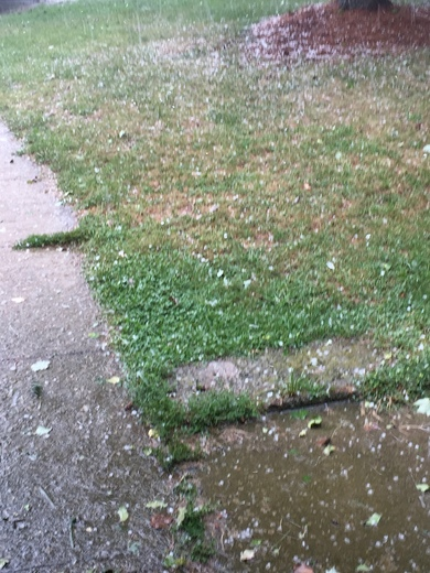 Hail in winchester