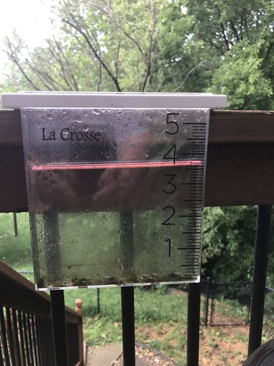 Almost 4 in of rain