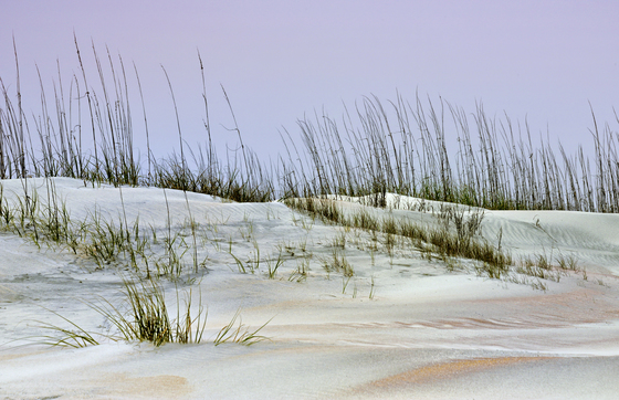 Dunes of Anastasia