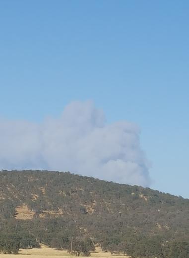 San Juan Fire