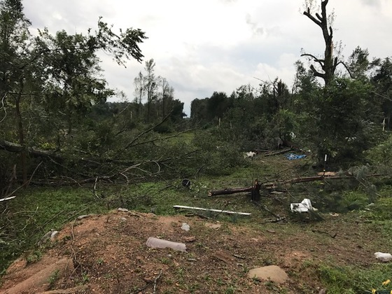 Palmetto, Al storm damage