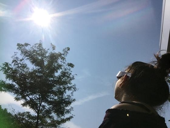 See the Sun Shadow