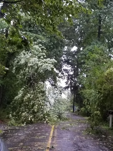 Pictures and video storm 9-5-17