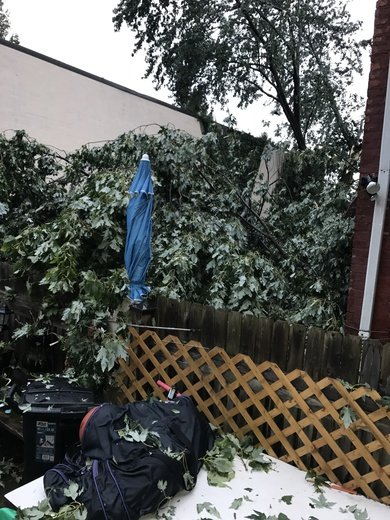 Pics from the storm yesterday