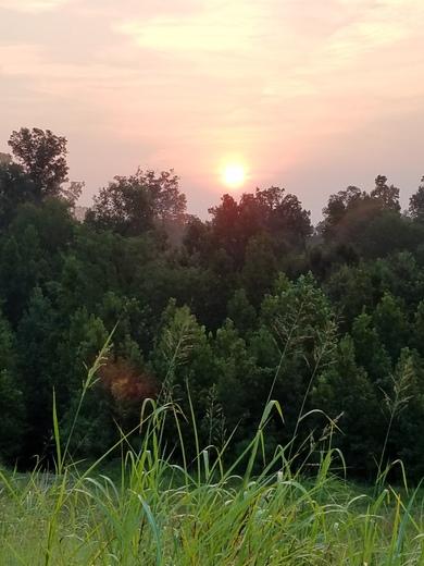 Sunrise in Claiborne County