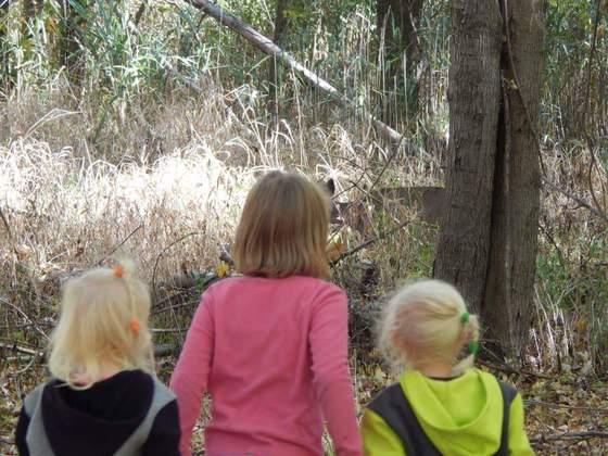 Girls watching deer, or is deer watching girls