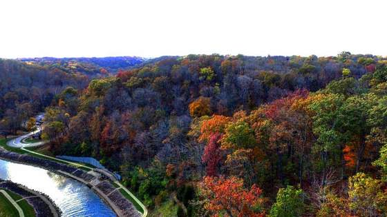 Caeser Creek Gorge - Fall