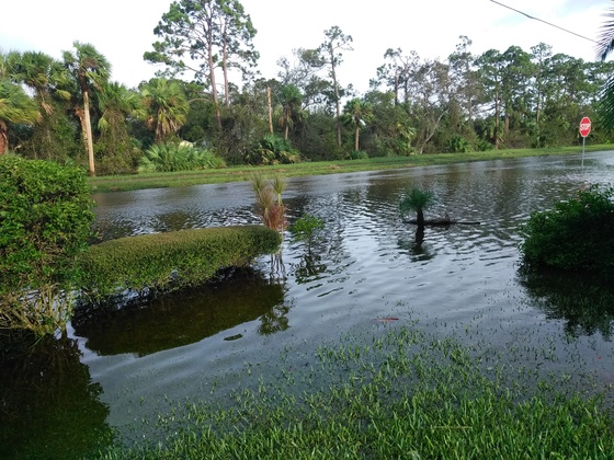 Floods left by hurricane Irma in lakewood park