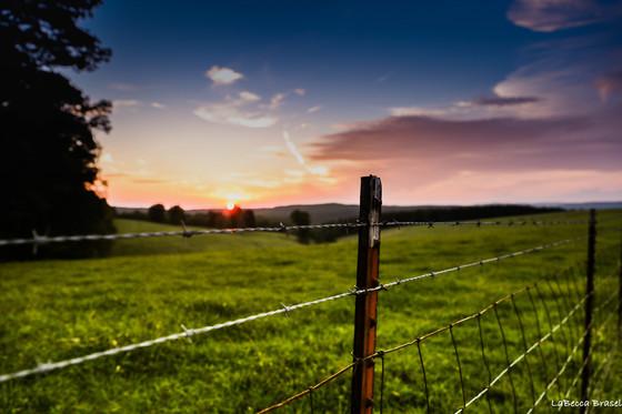 Summer evening in Arkansas
