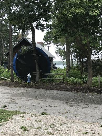 Trampoline blown over!!