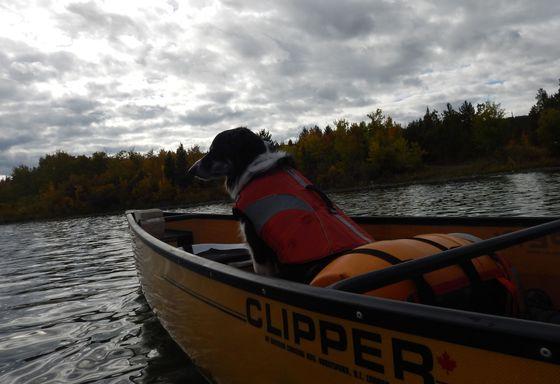 First Fall Canoe Trip