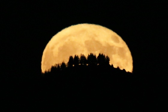 Harvest moon over Mt Bache