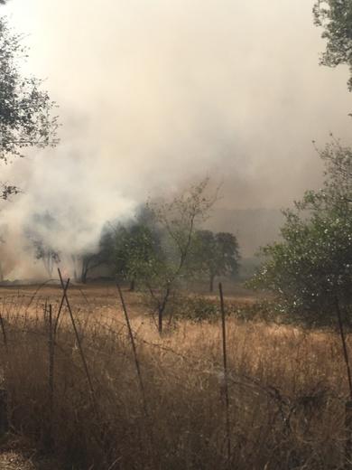 Grass valley fire
