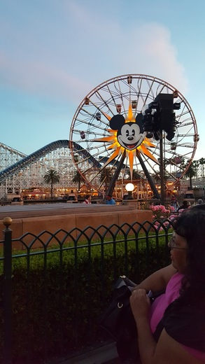 California Adventure April 2017