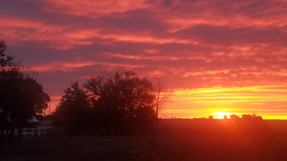 Boxholm sunset