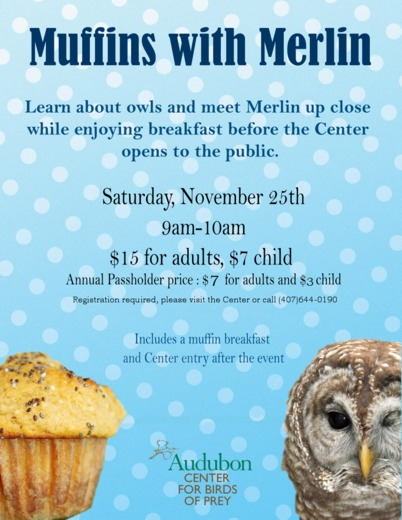 Muffins with Merlin