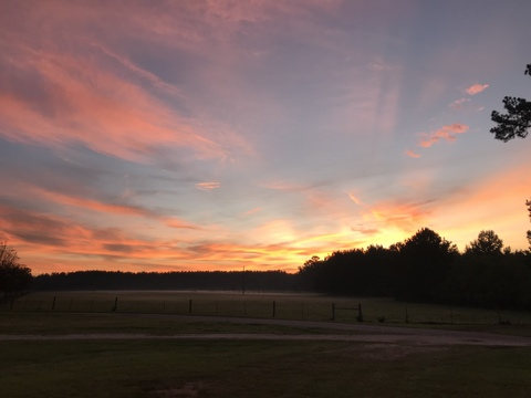 Sunrise in Carriere, MS