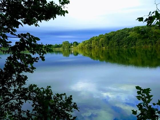 Morning Reflection at Lake Milton