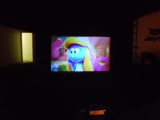 Smurfs at Pymatuning!