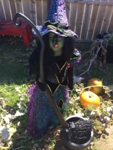 Halloween picture 2017