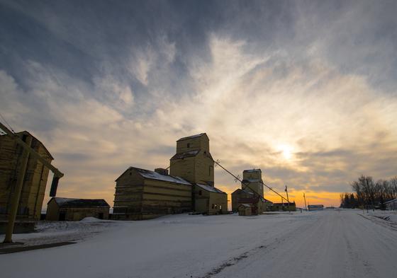 Cold November Grain