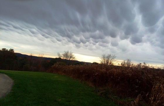 marshmallow clouds near East Brady PA