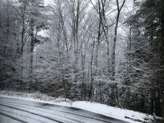 Picture taken today in No Weare, NH