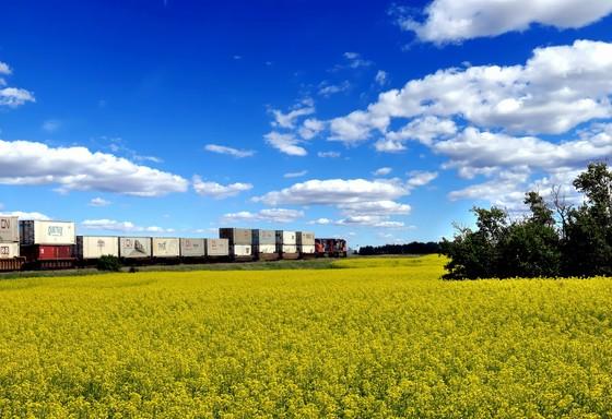 Crossing The Prairies